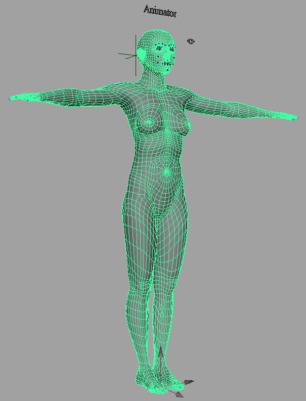 mWoman_model_wireframe_1