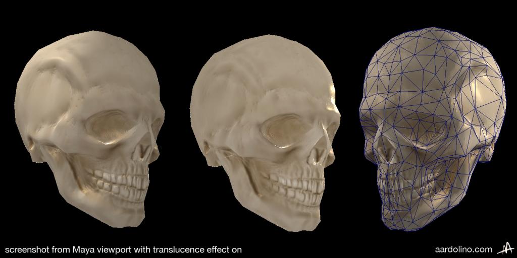 skull_realtime_aardolino_1